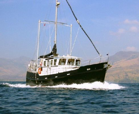 Boats for Sale & Yachts Seahorse DIESEL DUCK 462 2011 All Boats